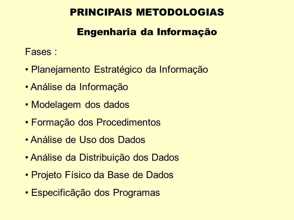 A engenharia da informação é um conjunto integrado de técnicas que organiizam os dados de um determinado negócio e determina em acesso fácil, por part