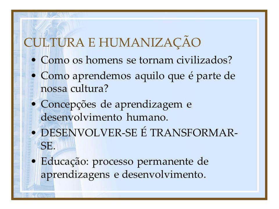 Processo evolutivo RESULTADO DO TRABALHO HUMANO = cultura: instrumentos/idéias/produtos.