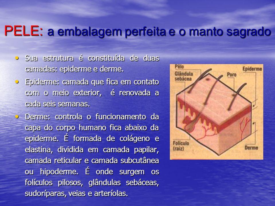 PELE: a embalagem perfeita e o manto sagrado Sua estrutura é constituída de duas camadas: epiderme e derme. Sua estrutura é constituída de duas camada