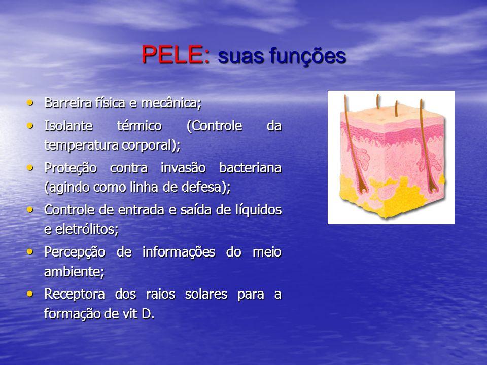 PELE: suas funções Barreira física e mecânica; Barreira física e mecânica; Isolante térmico (Controle da temperatura corporal); Isolante térmico (Cont