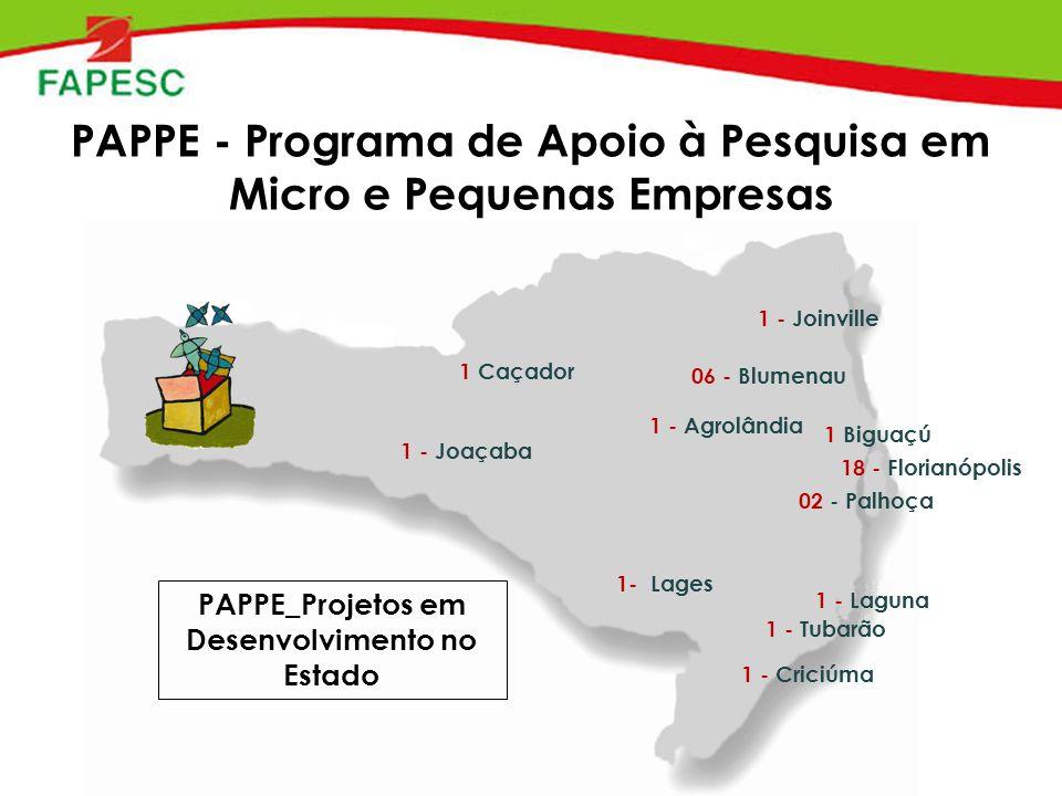 PAPPE - Programa de Apoio à Pesquisa em Micro e Pequenas Empresas 06 - Blumenau 18 - Florianópolis 02 - Palhoça 1 - Tubarão 1 - Joaçaba 1 - Joinville 1 - Agrolândia 1 Biguaçú 1 - Laguna 1 - Criciúma 1 Caçador 1- Lages PAPPE_Projetos em Desenvolvimento no Estado