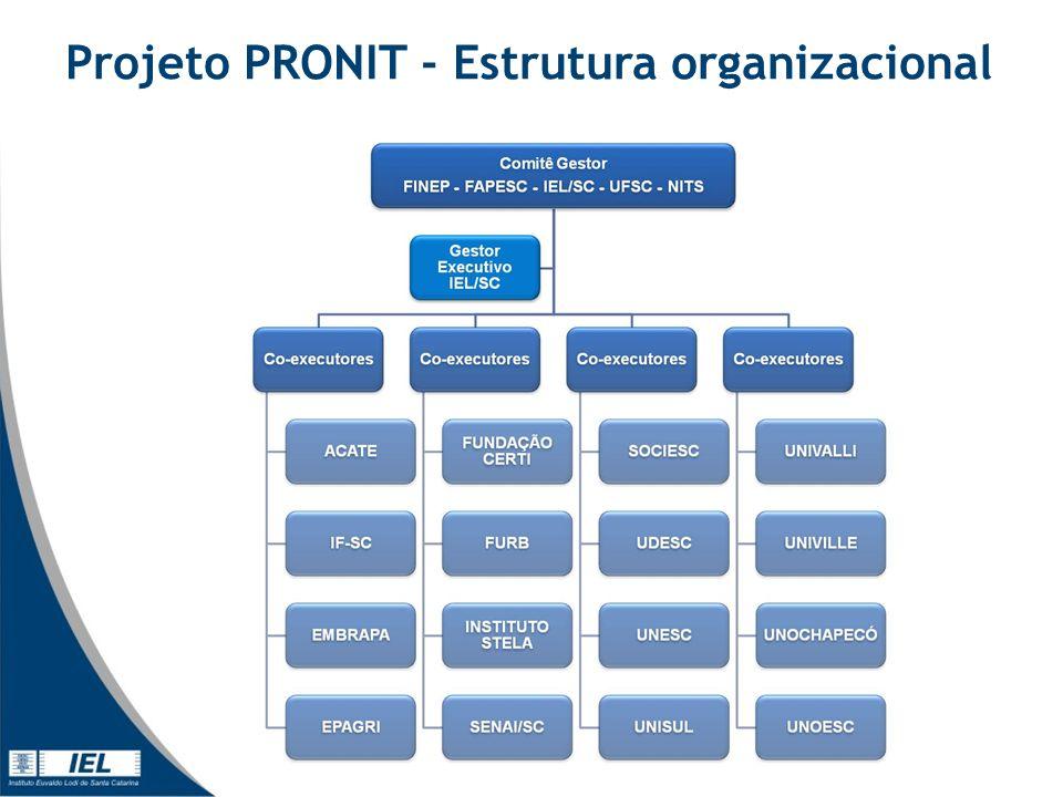 Projeto PRONIT - Estrutura organizacional