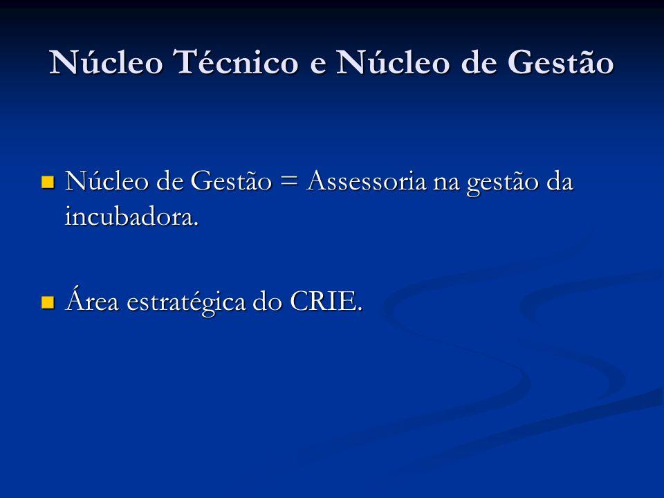 Núcleo Técnico e Núcleo de Gestão Núcleo de Gestão = Assessoria na gestão da incubadora. Núcleo de Gestão = Assessoria na gestão da incubadora. Área e