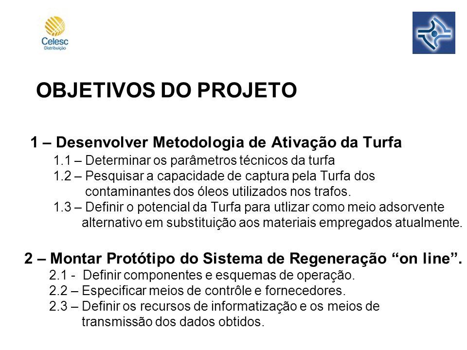 OBJETIVOS DO PROJETO 1 – Desenvolver Metodologia de Ativação da Turfa 1.1 – Determinar os parâmetros técnicos da turfa 1.2 – Pesquisar a capacidade de