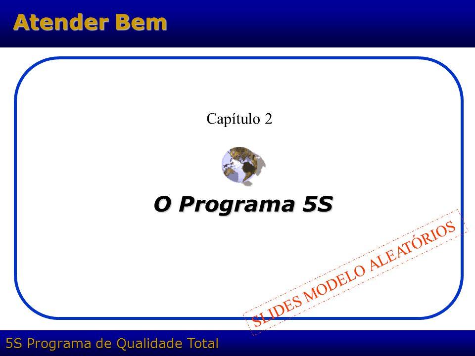 5S Programa de Qualidade Total Atender Bem O Programa 5S Capítulo 2 SLIDES MODELO ALEATÓRIOS