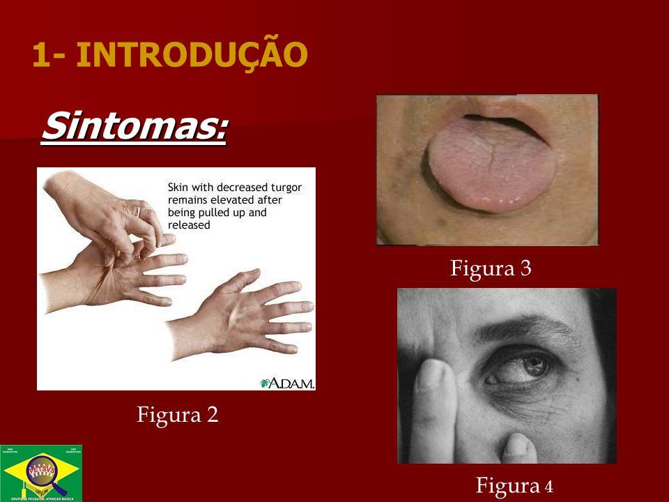Sintomas : Figura 2 Figura 3 Figura 4 1- INTRODUÇÃO