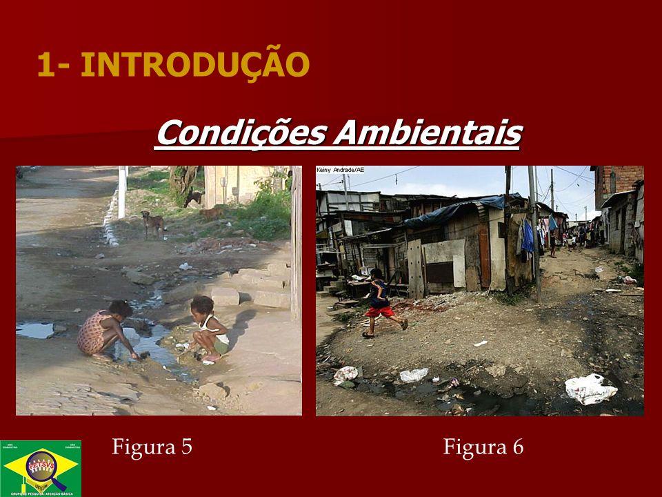 Condições Ambientais Figura 5Figura 6 1- INTRODUÇÃO