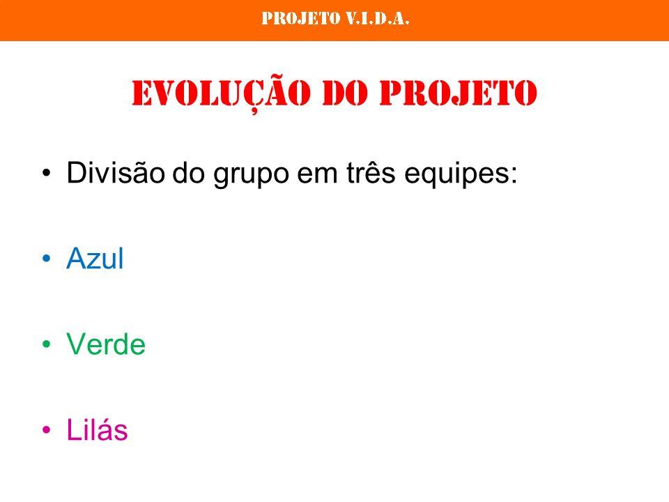 Evolução do Projeto Divisão do grupo em três equipes: Azul Verde Lilás