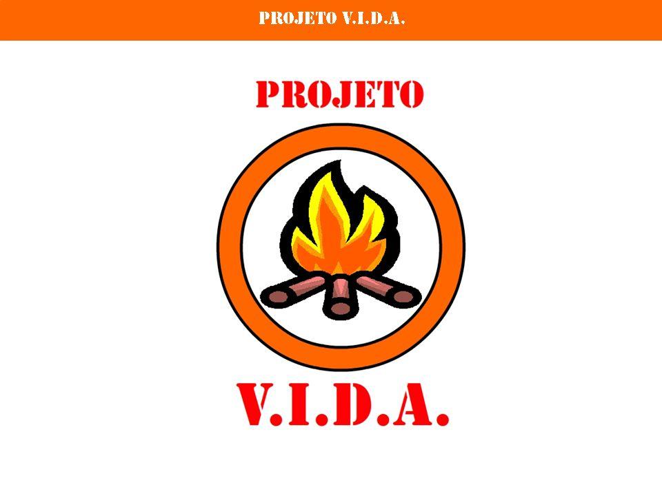 Projeto V.I.D.A.Uma iniciativa: Realização: Equipe do Projeto V.I.D.A.