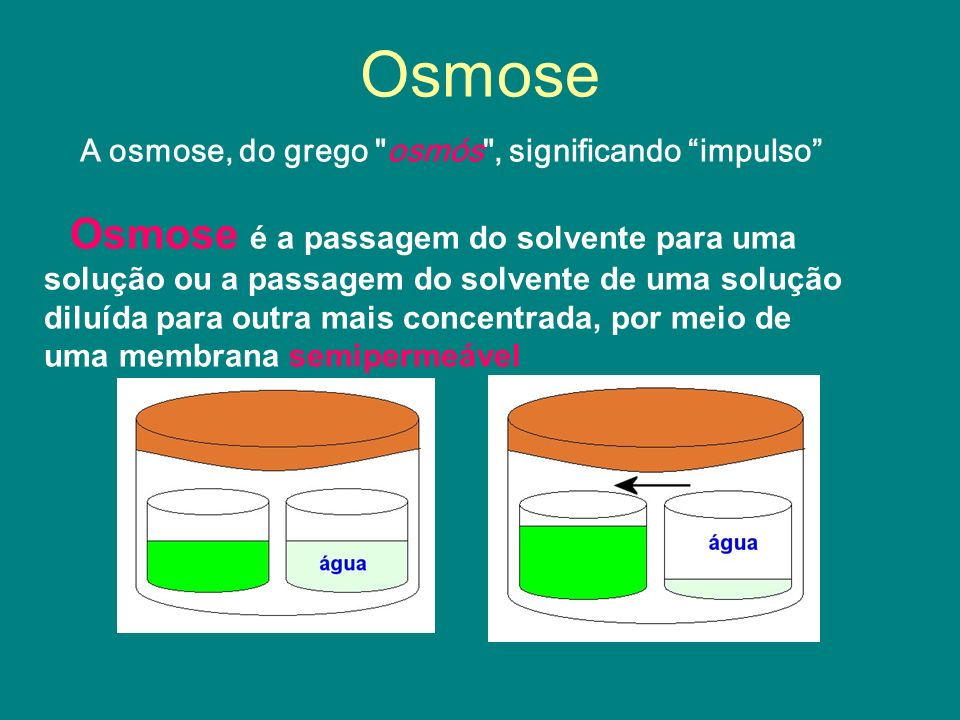 PRESSÃO OSMÓTICA Ao realizar a osmose, a água acaba empurrando a membrana semipermeável.