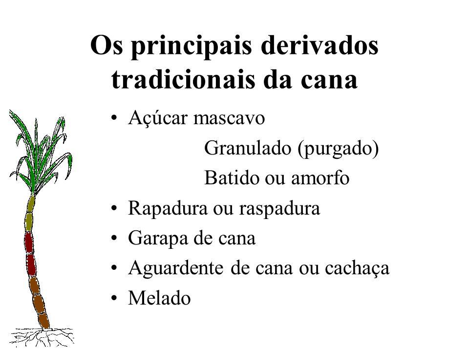 Os principais derivados tradicionais da cana Açúcar mascavo Granulado (purgado) Batido ou amorfo Rapadura ou raspadura Garapa de cana Aguardente de ca