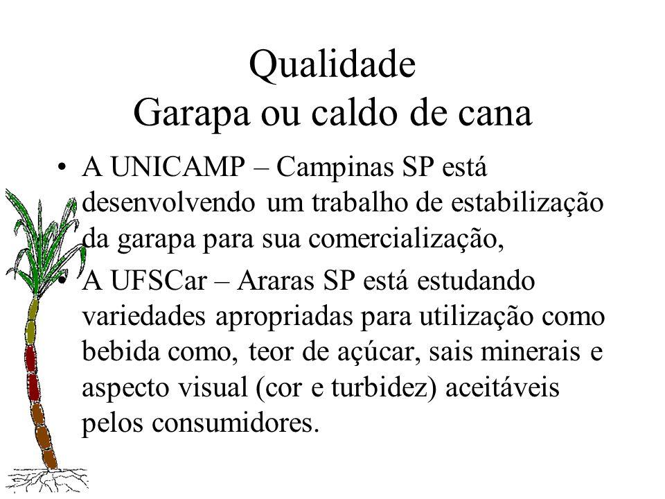 Qualidade Garapa ou caldo de cana A UNICAMP – Campinas SP está desenvolvendo um trabalho de estabilização da garapa para sua comercialização, A UFSCar
