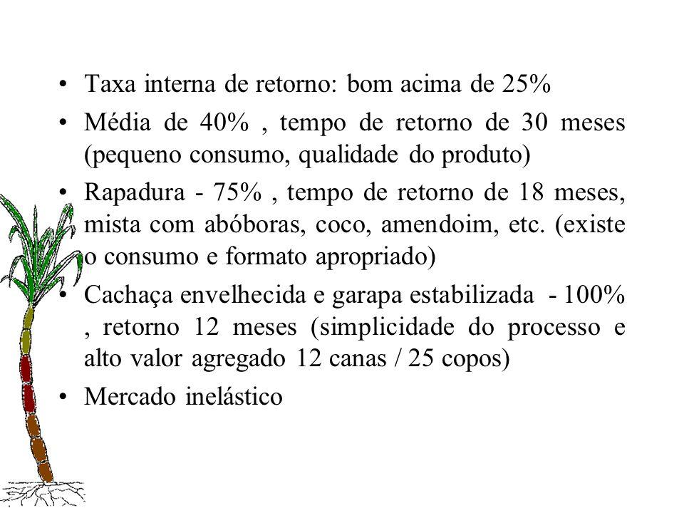 Taxa interna de retorno: bom acima de 25% Média de 40%, tempo de retorno de 30 meses (pequeno consumo, qualidade do produto) Rapadura - 75%, tempo de