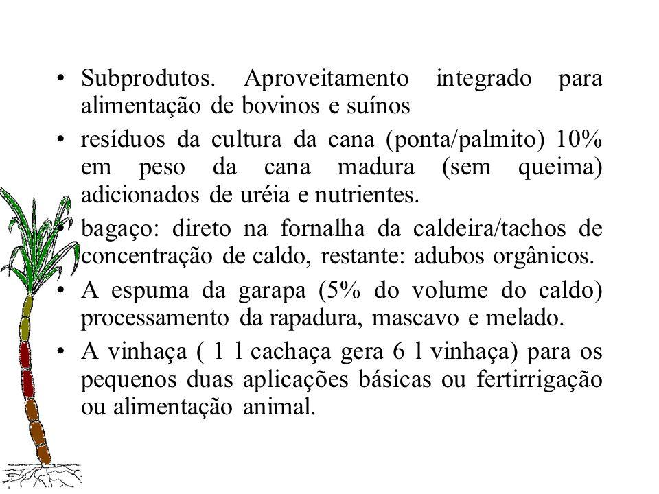 Subprodutos. Aproveitamento integrado para alimentação de bovinos e suínos resíduos da cultura da cana (ponta/palmito) 10% em peso da cana madura (sem