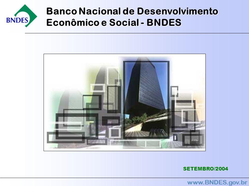 www.BNDES.gov.br Banco Nacional de Desenvolvimento Econômico e Social - BNDES SETEMBRO/2004