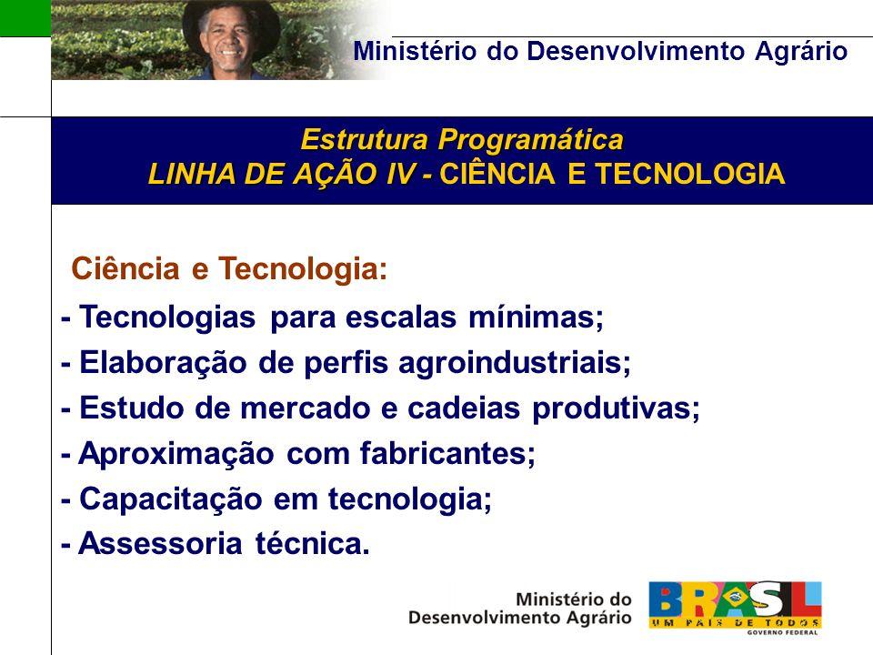 Ministério do Desenvolvimento Agrário Estrutura Programática LINHA DE AÇÃO IV - Estrutura Programática LINHA DE AÇÃO IV - CIÊNCIA E TECNOLOGIA Ciência e Tecnologia: - Tecnologias para escalas mínimas; - Elaboração de perfis agroindustriais; - Estudo de mercado e cadeias produtivas; - Aproximação com fabricantes; - Capacitação em tecnologia; - Assessoria técnica.