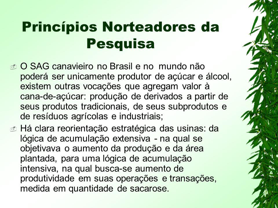 Princípios Norteadores da Pesquisa O SAG canavieiro no Brasil e no mundo não poderá ser unicamente produtor de açúcar e álcool, existem outras vocações que agregam valor à cana-de-açúcar: produção de derivados a partir de seus produtos tradicionais, de seus subprodutos e de resíduos agrícolas e industriais; Há clara reorientação estratégica das usinas: da lógica de acumulação extensiva - na qual se objetivava o aumento da produção e da área plantada, para uma lógica de acumulação intensiva, na qual busca-se aumento de produtividade em suas operações e transações, medida em quantidade de sacarose.