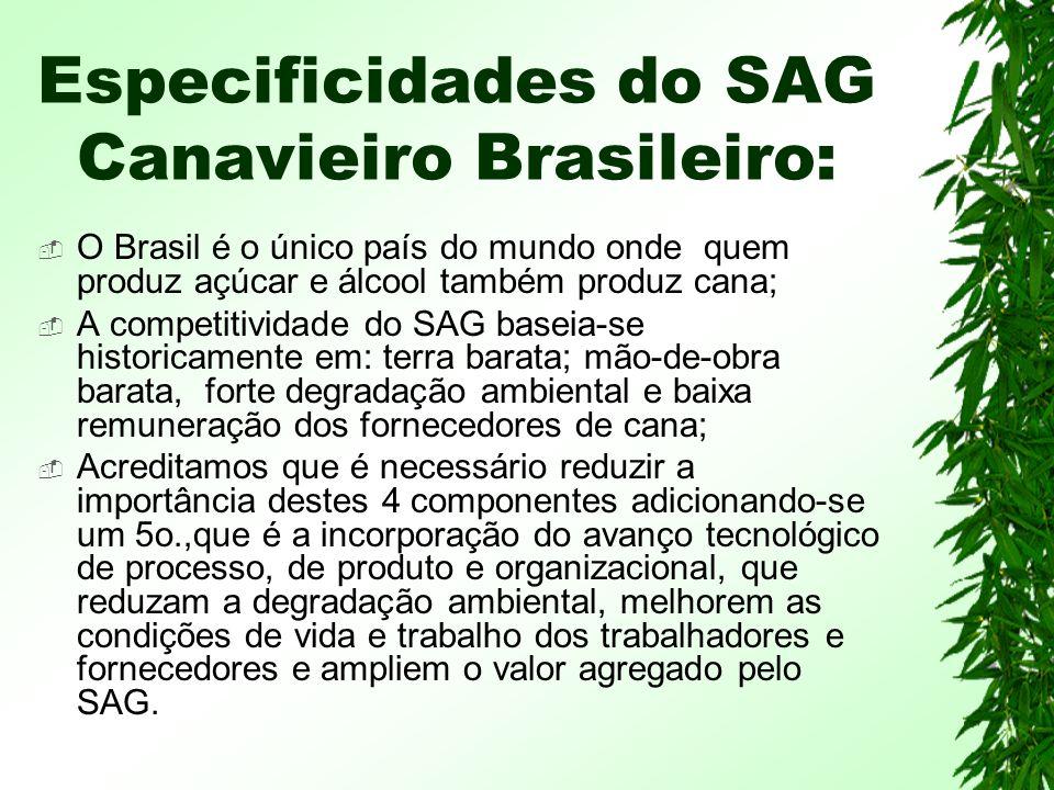 Especificidades do SAG Canavieiro Brasileiro: O Brasil é o único país do mundo onde quem produz açúcar e álcool também produz cana; A competitividade do SAG baseia-se historicamente em: terra barata; mão-de-obra barata, forte degradação ambiental e baixa remuneração dos fornecedores de cana; Acreditamos que é necessário reduzir a importância destes 4 componentes adicionando-se um 5o.,que é a incorporação do avanço tecnológico de processo, de produto e organizacional, que reduzam a degradação ambiental, melhorem as condições de vida e trabalho dos trabalhadores e fornecedores e ampliem o valor agregado pelo SAG.