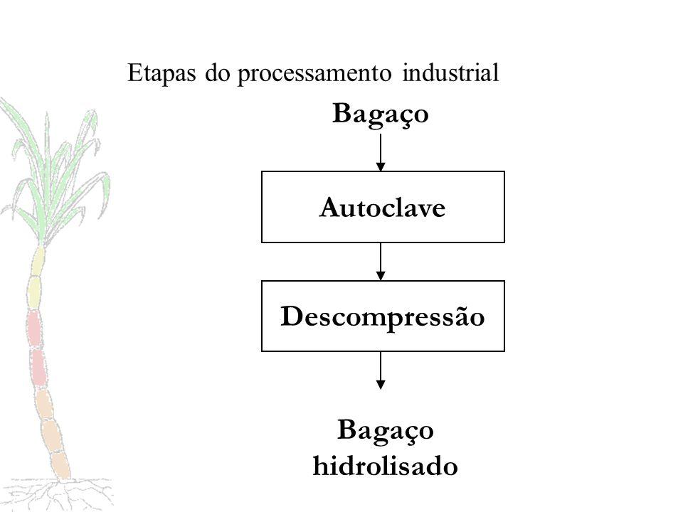 Novidade da tecnologia Alternativa viável para integração de pecuária e unidades produtoras de derivados de cana de açúcar, que aproveitam excedentes de bagaço e vapor.