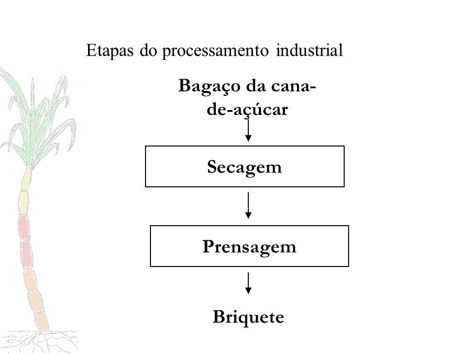 Palmito Apresentação Produto comestível, constituído de folhas ainda não desenvolvidas e imbricadas, extraído do centro da parte cilíndrica localizada na extremidade superior do colmo da cana-de-açúcar.