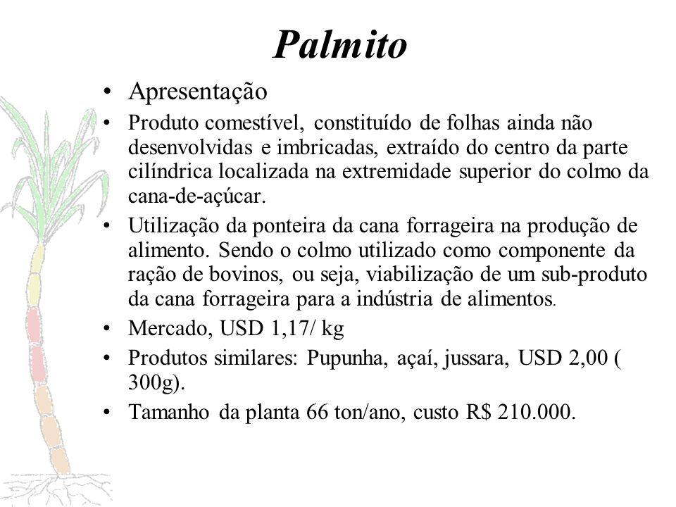 Preparo (descascamento/corte) Esterilização Ponteira da cana-de-açúcar Palmito em conserva Branqueamento Acondicionamento Salga