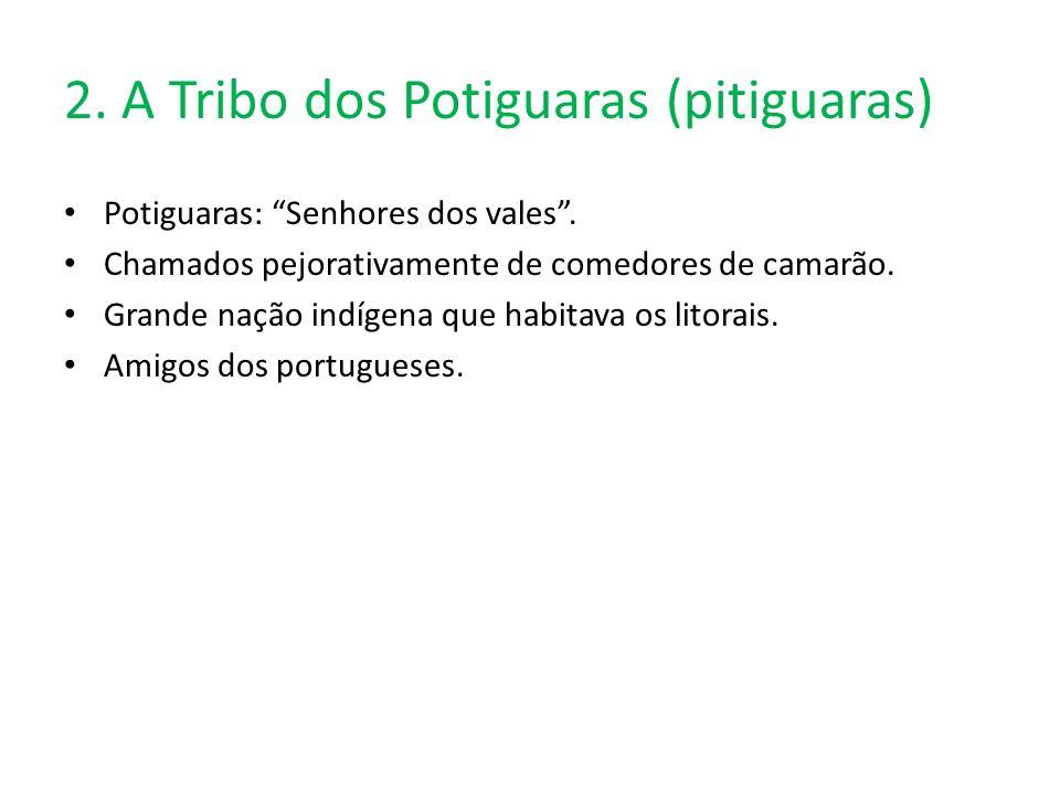 2.A Tribo dos Potiguaras (pitiguaras) Potiguaras: Senhores dos vales.