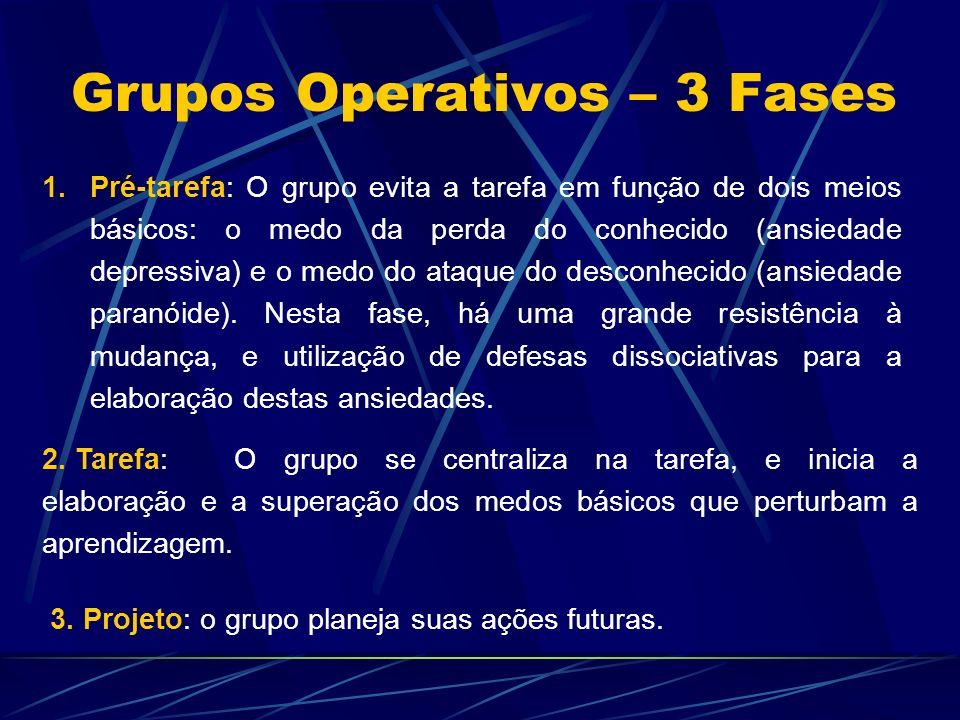 Grupos Operativos – 3 Fases 1.Pré-tarefa: O grupo evita a tarefa em função de dois meios básicos: o medo da perda do conhecido (ansiedade depressiva) e o medo do ataque do desconhecido (ansiedade paranóide).