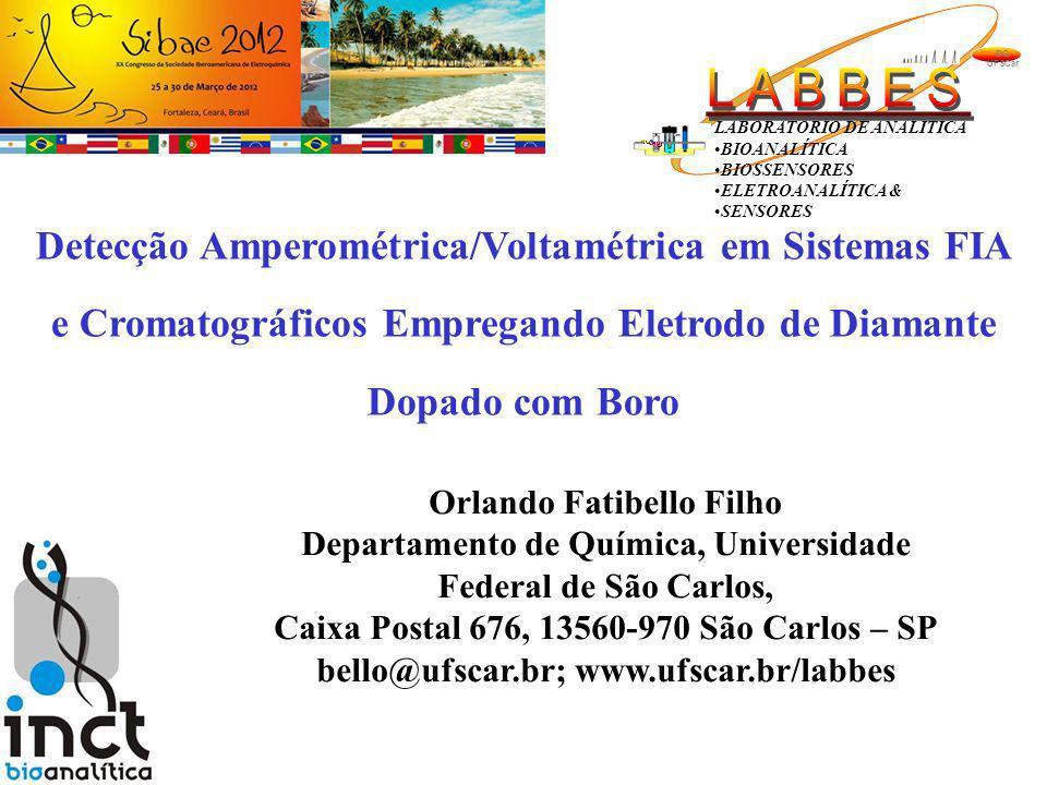 2 Prof.Dr. Romeu C. Rocha-Filho (DQ-UFSCar) Prof.