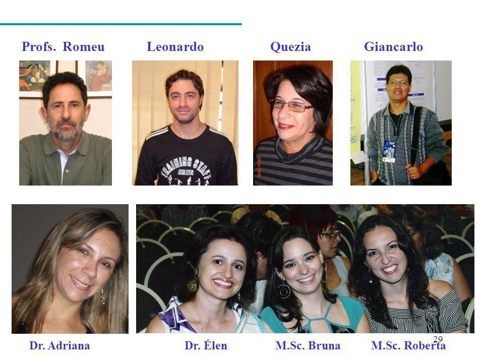 29 Profs. Romeu Leonardo Quezia Giancarlo Dr. Adriana Dr. Élen M.Sc. Bruna M.Sc. Roberta