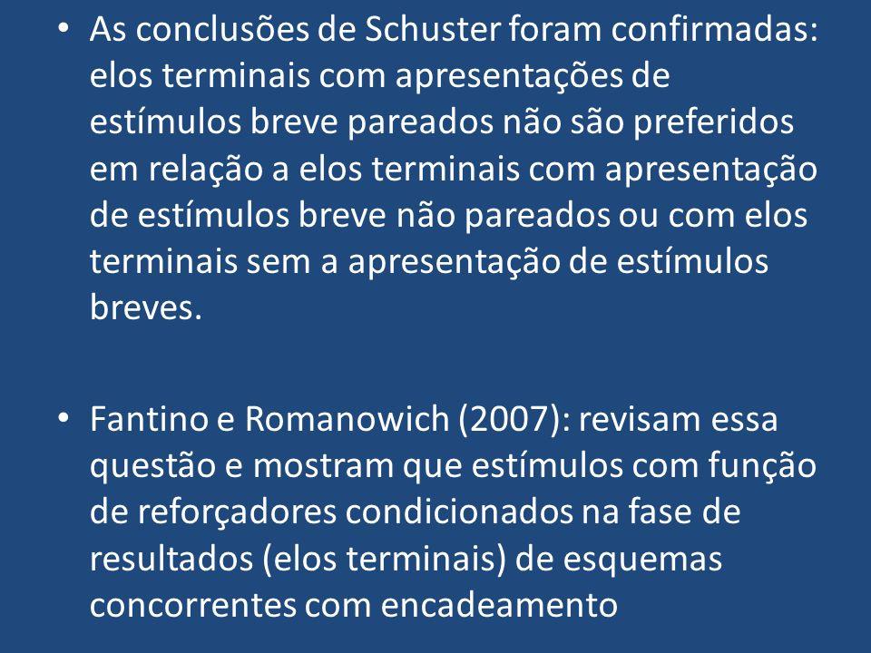 As conclusões de Schuster foram confirmadas: elos terminais com apresentações de estímulos breve pareados não são preferidos em relação a elos termina