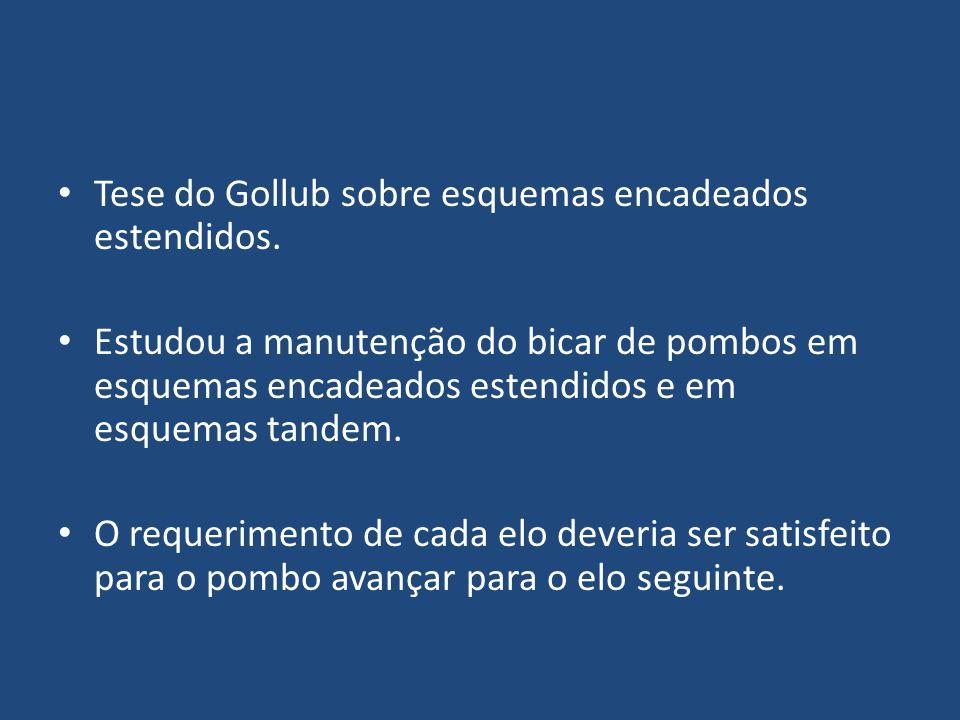 Tese do Gollub sobre esquemas encadeados estendidos. Estudou a manutenção do bicar de pombos em esquemas encadeados estendidos e em esquemas tandem. O