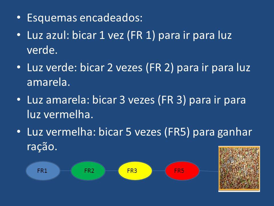 Esquemas encadeados: Luz azul: bicar 1 vez (FR 1) para ir para luz verde. Luz verde: bicar 2 vezes (FR 2) para ir para luz amarela. Luz amarela: bicar