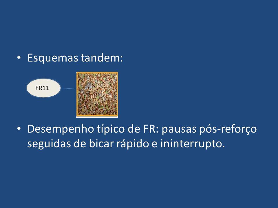 Esquemas tandem: Desempenho típico de FR: pausas pós-reforço seguidas de bicar rápido e ininterrupto. FR11