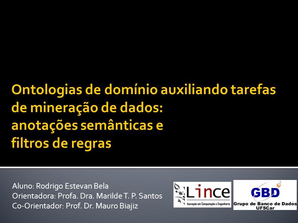 Aluno: Rodrigo Estevan Bela Orientadora: Profa. Dra. Marilde T. P. Santos Co-Orientador: Prof. Dr. Mauro Biajiz Ontologias de domínio auxiliando taref