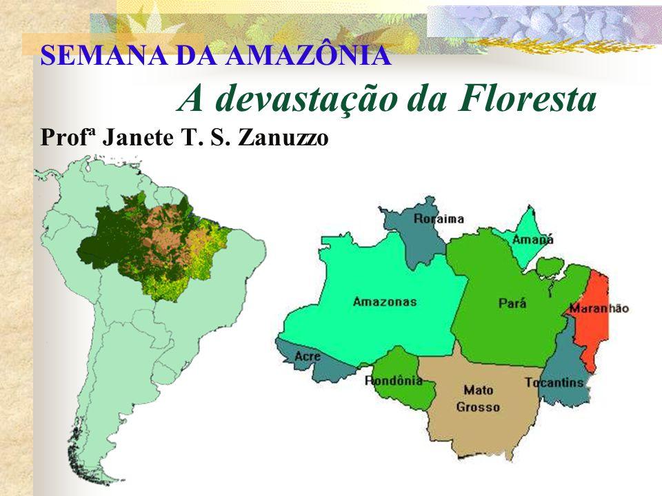 SEMANA DA AMAZÔNIA A devastação da Floresta Profª Janete T. S. Zanuzzo