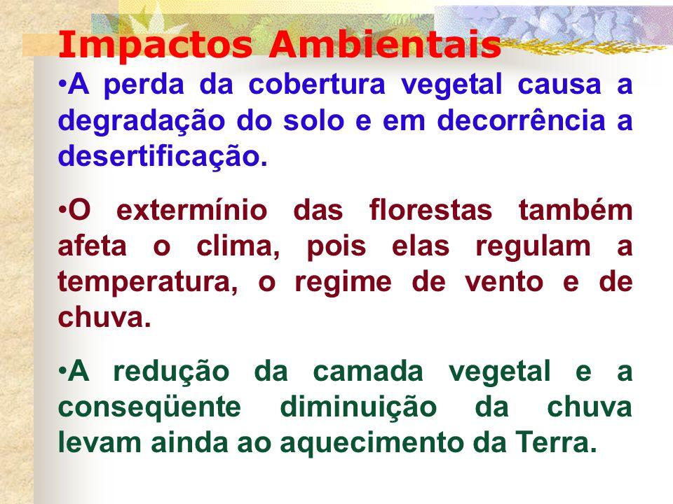 Impactos Ambientais A perda da cobertura vegetal causa a degradação do solo e em decorrência a desertificação. O extermínio das florestas também afeta