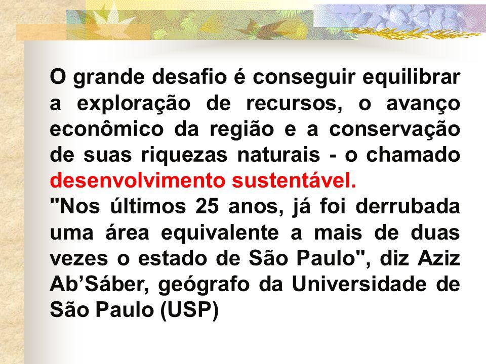 O grande desafio é conseguir equilibrar a exploração de recursos, o avanço econômico da região e a conservação de suas riquezas naturais - o chamado d