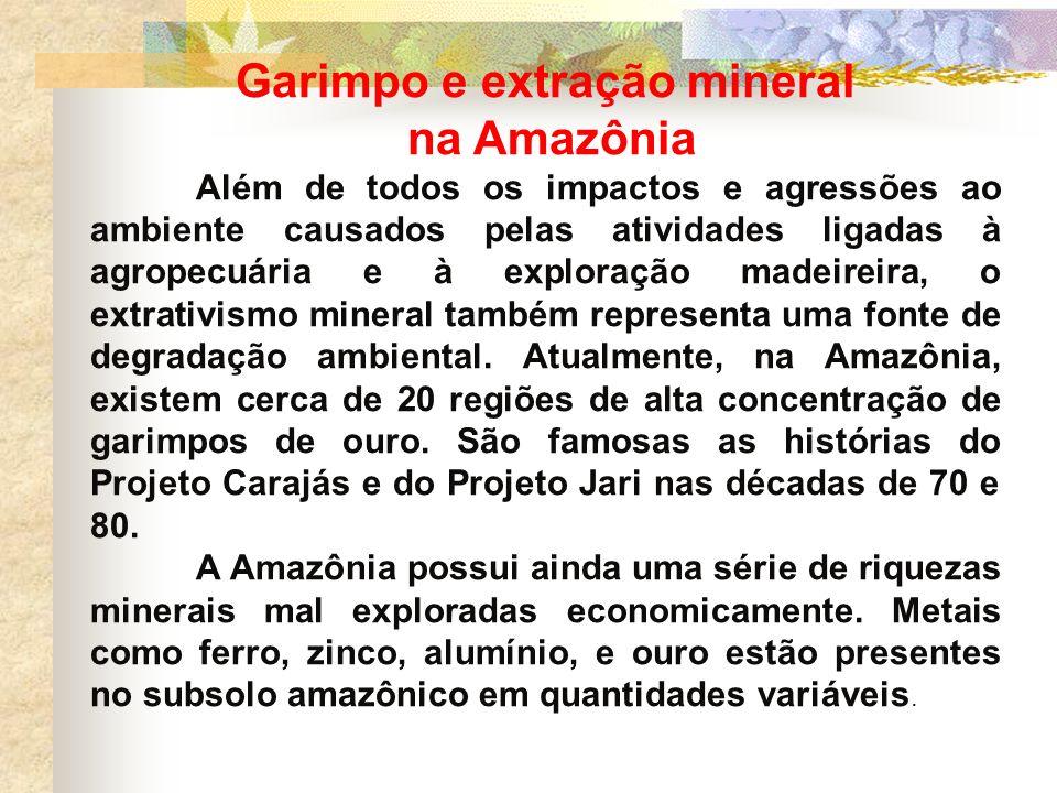 Garimpo e extração mineral na Amazônia Além de todos os impactos e agressões ao ambiente causados pelas atividades ligadas à agropecuária e à exploraç