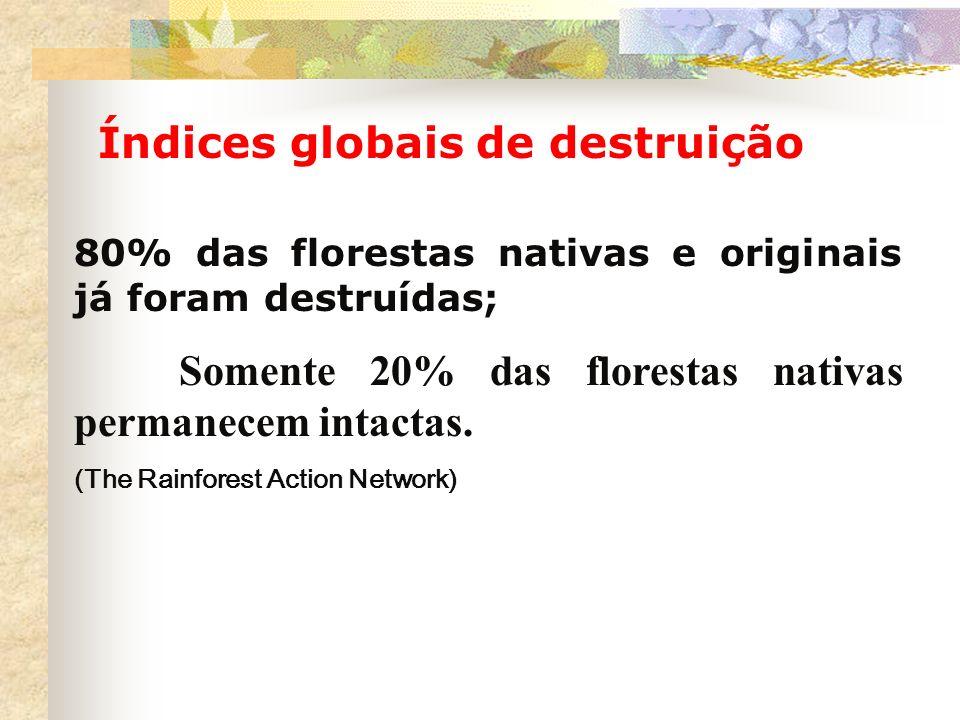 Índices globais de destruição 80% das florestas nativas e originais já foram destruídas; Somente 20% das florestas nativas permanecem intactas. (The R