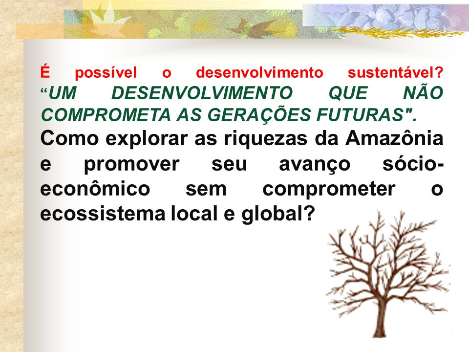 É possível o desenvolvimento sustentável? UM DESENVOLVIMENTO QUE NÃO COMPROMETA AS GERAÇÕES FUTURAS
