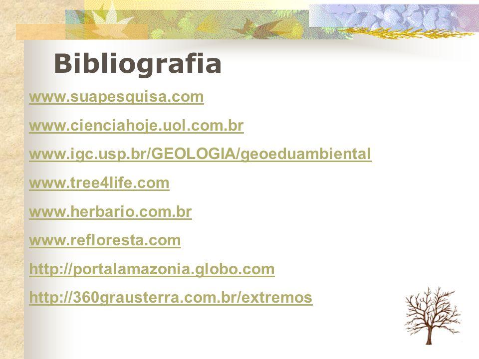 Bibliografia www.suapesquisa.com www.cienciahoje.uol.com.br www.igc.usp.br/GEOLOGIA/geoeduambiental www.tree4life.com www.herbario.com.br www.reflores
