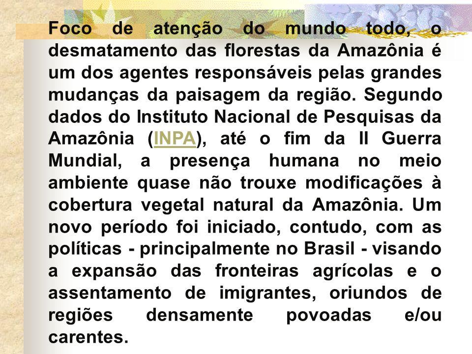 Foco de atenção do mundo todo, o desmatamento das florestas da Amazônia é um dos agentes responsáveis pelas grandes mudanças da paisagem da região. Se
