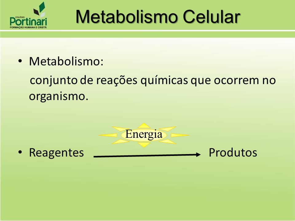 Metabolismo Celular Metabolismo: conjunto de reações químicas que ocorrem no organismo. Reagentes Produtos Energia