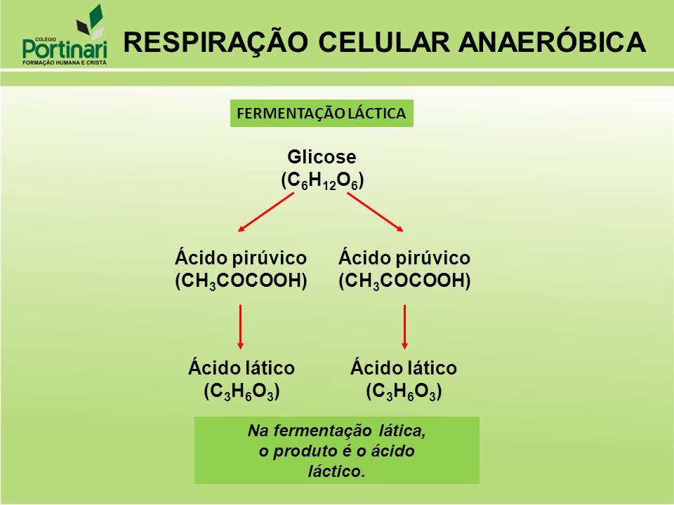 Glicose (C 6 H 12 O 6 ) Ácido pirúvico (CH 3 COCOOH) Ácido pirúvico (CH 3 COCOOH) Ácido lático (C 3 H 6 O 3 ) Ácido lático (C 3 H 6 O 3 ) Na fermentaç