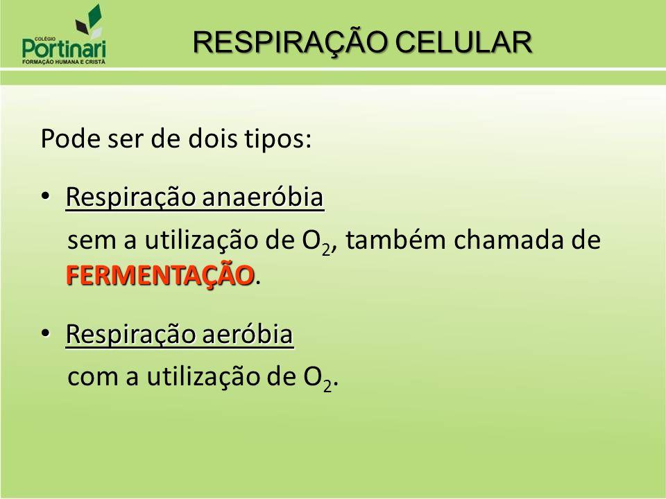 Pode ser de dois tipos: Respiração anaeróbia Respiração anaeróbia FERMENTAÇÃO sem a utilização de O 2, também chamada de FERMENTAÇÃO. Respiração aerób