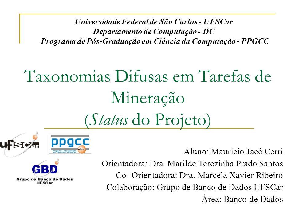 Taxonomias Difusas em Tarefas de Mineração (Status do Projeto) Aluno: Mauricio Jacó Cerri Orientadora: Dra. Marilde Terezinha Prado Santos Co- Orienta