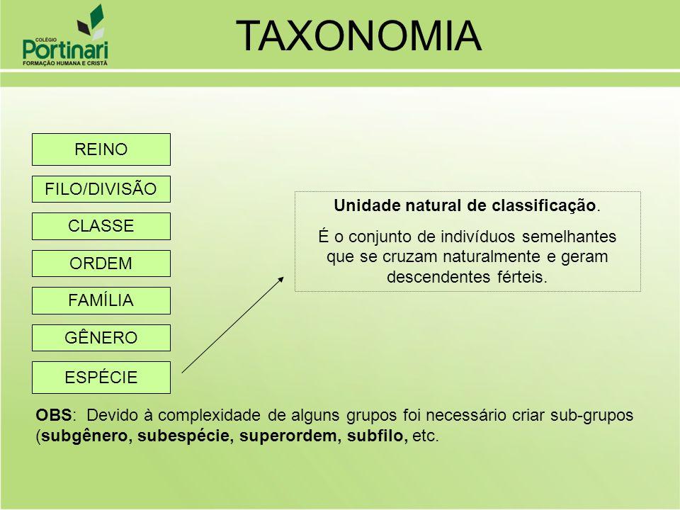 Unidade natural de classificação.