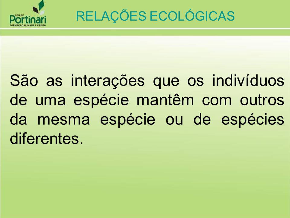 RELAÇÕES ECOLÓGICAS DESARMÔNICAS ( ocorre prejuízo para um dos envolvidos) INTER-ESPECÍFICAS (ocorrem entre indivíduos de espécies diferentes, dentro das comunidades) COMPETIÇÃO (- / -) (INDIVÍDUOS CONCORREM PELOS MESMOS RECURSOS DO MEIO.) EX: LEÕES E HIENAS DISPUTANDO A ZEBRA PREDATISMO (+ / -) (INDIVÍDUOS MATAM E COMEM OUTROS DE ESPÉCIES DIFERENTES.) EX: LEÃO MATA E COME A ZEBRA AMENSALISMO (+ / -) (INDIVÍDUO LIBERA SUBSTÂNCIA QUE IMPEDE O DESENVOLVIMENTO DE OUTRO.) EX: FUNGOS QUE PRODUZEM ANTIBIÓTICOS PARASITISMO (+ / -) (INDIVÍDUO VIVE ÀS CUSTAS DE OUTRO,) EX: LOMBRIGAS, CARRAPATO, VÍRUS, ETC RELAÇÕES ECOLÓGICAS