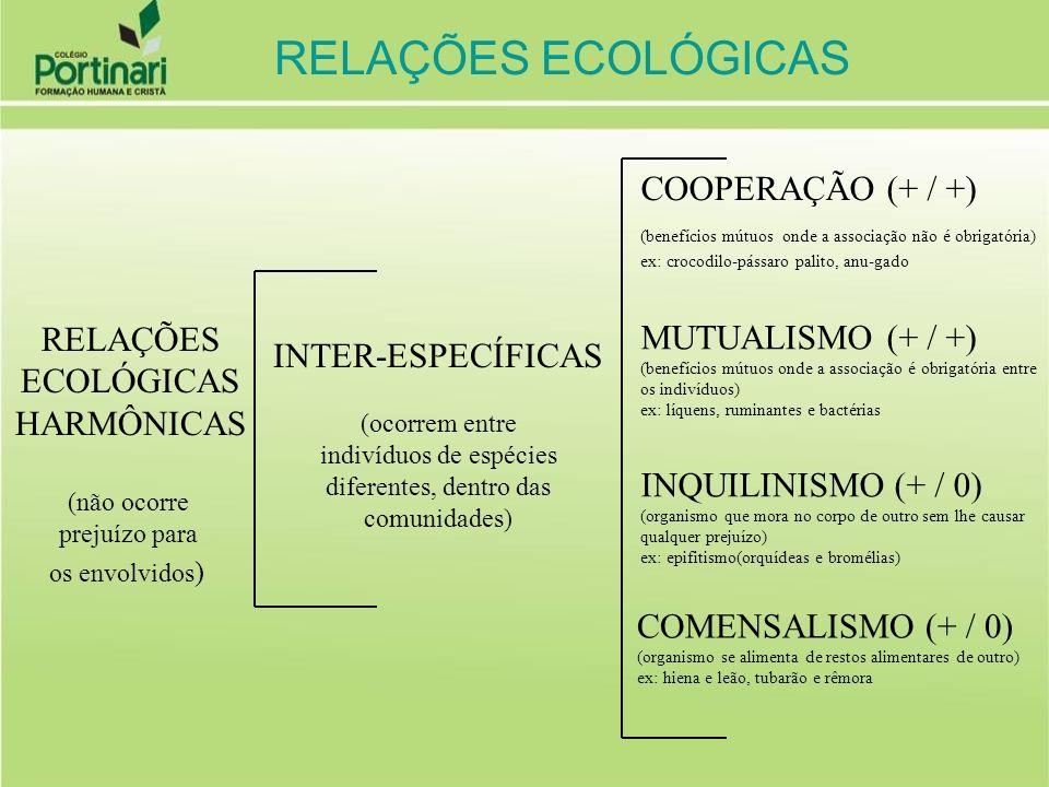 PROTOCOOPERAÇÃO Trata-se de uma associação bilateral, entre espécies diferentes, na qual ambas se beneficiam; contudo, tal associação não é obrigatória, podendo cada espécie viver isoladamente.