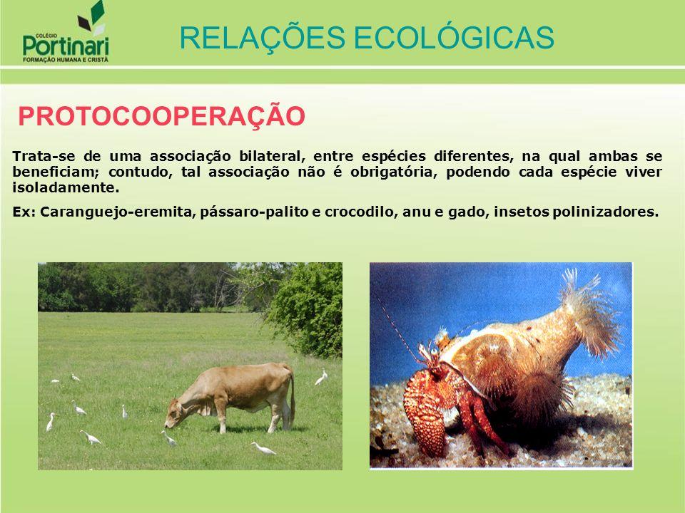 MUTUALISMO Associação na qual duas espécies envolvidas são beneficiadas, porém, cada espécie só consegue viver na presença da outra, associação permanente e obrigatória entre dois seres vivos de espécies diferentes.